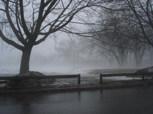 ryn-park-feb-12-09-009-500-ox