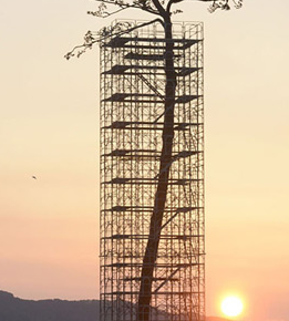 fsc_Japan_Erects_Massive_Sculpture_of_the_Last_Standing_Tree_from_a_Forest_Destroyed_by_the_2011_Tsunami_Colossal (1)