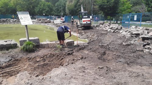 Duck pond repair high park aug 7 2019